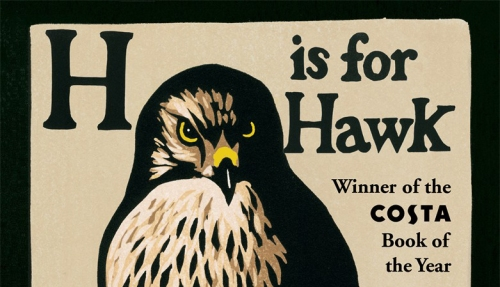 H is for Hawk Cropped for blog