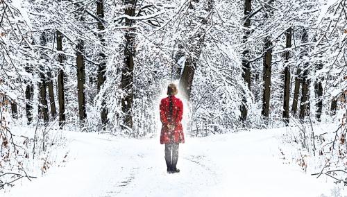 Snow Garden Hero
